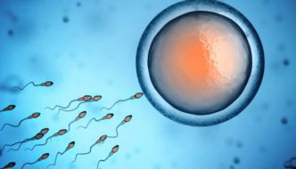 Tips For Healthy Sperm